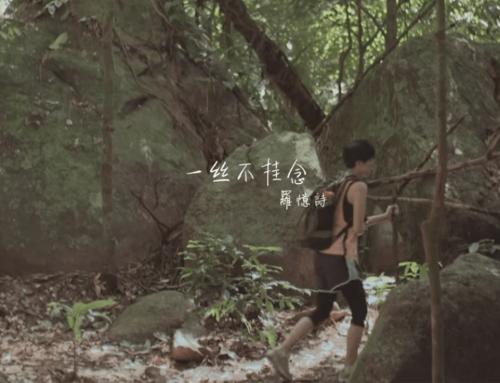 一絲不掛念 (2015)